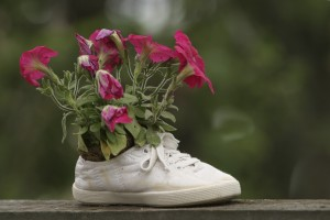 flores en zapato