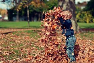 plantillas otoño