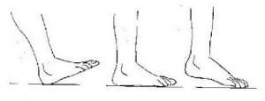 plantillas para el calzado 1