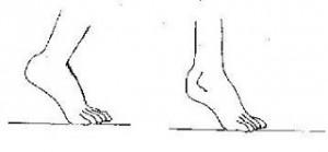 plantillas para el calzado 2