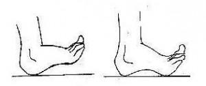 plantillas para el calzado 4